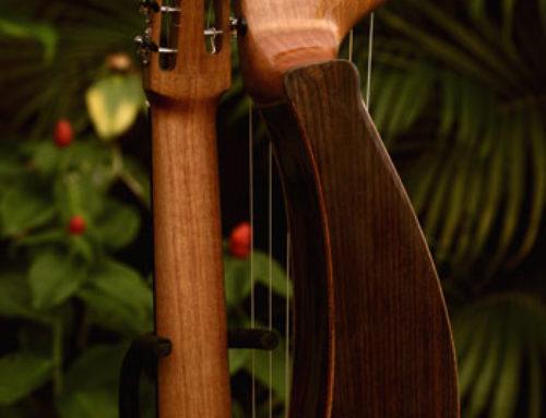 14 String Harp Back