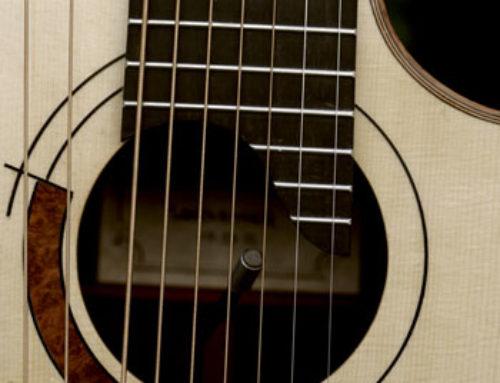 14 String Harp Rosette