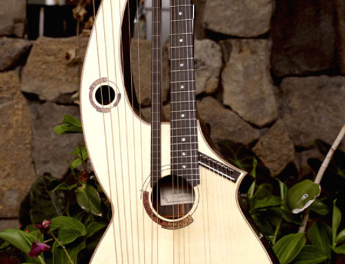 22 String Harp Front