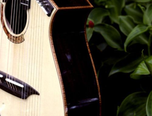 22 String Harp Side
