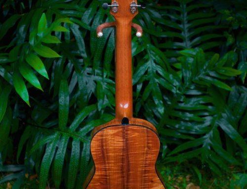 Bamboo Moon 5