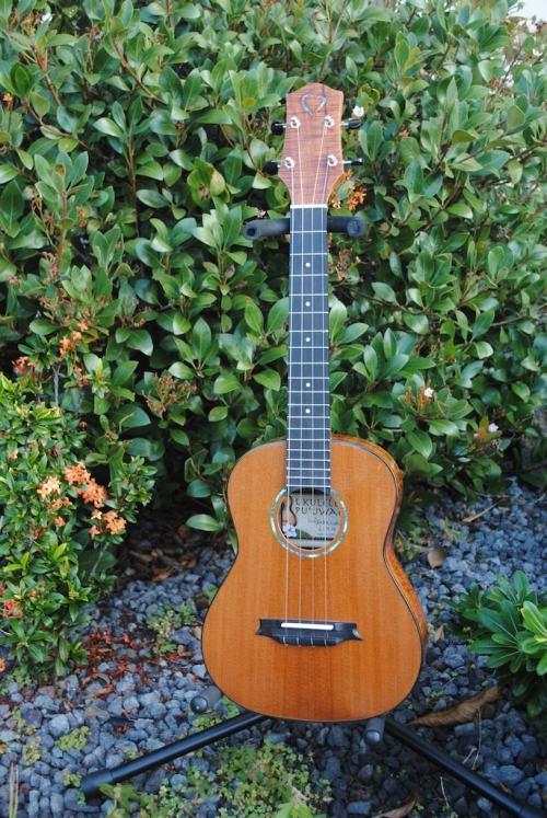 Ukulele For Sale : redwood dreams tenor ukulele for sale white guitars ~ Russianpoet.info Haus und Dekorationen
