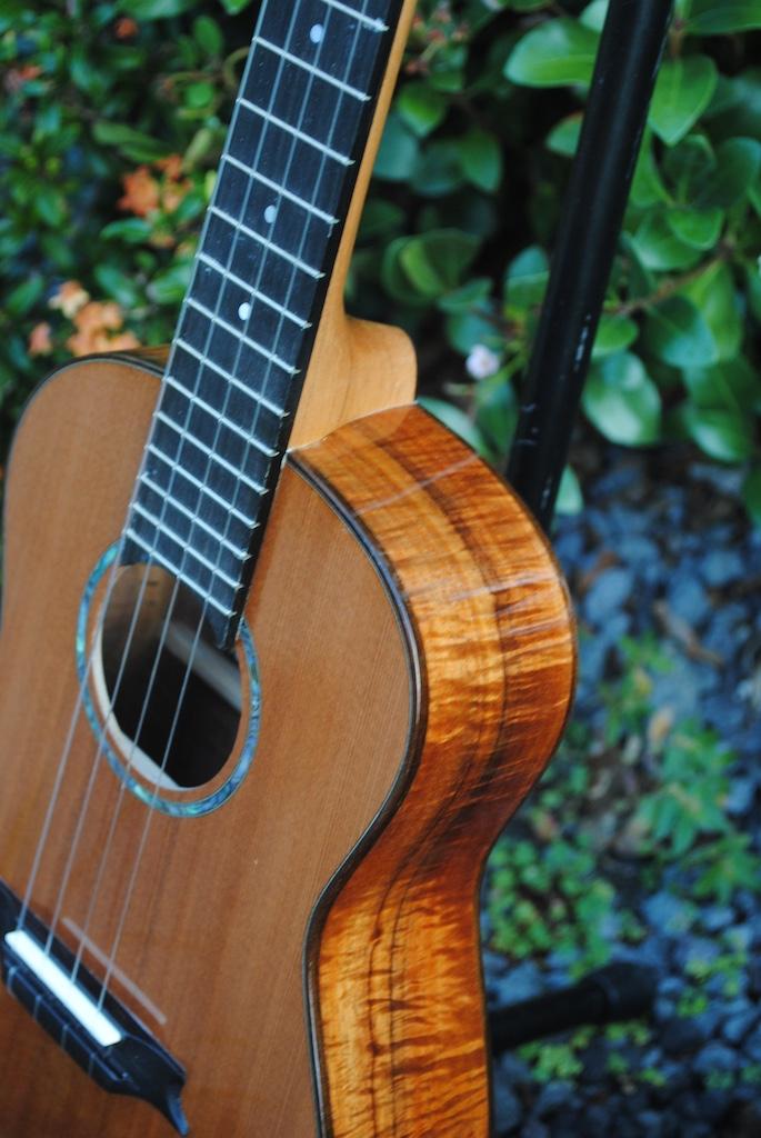 sold redwood dreams tenor ukulele for sale white guitars. Black Bedroom Furniture Sets. Home Design Ideas